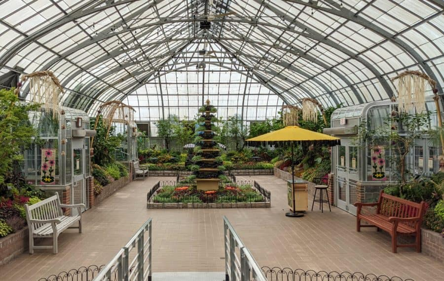 An overview of the showroom at the Krohn Conservatory's Butterfly Show