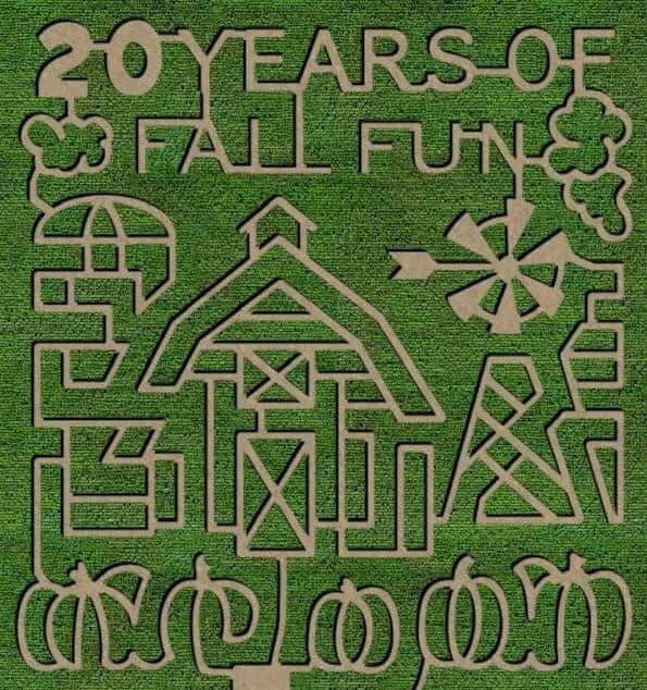 the 2021 corn maze design for Niederman Farm